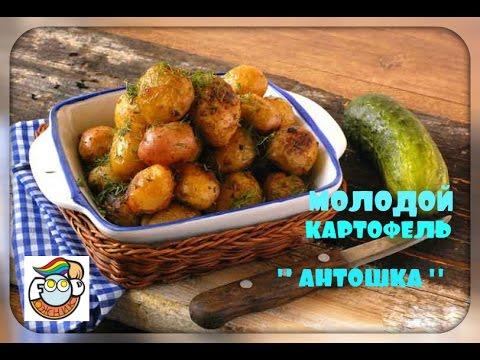 10 рецептов с молодым картофелем