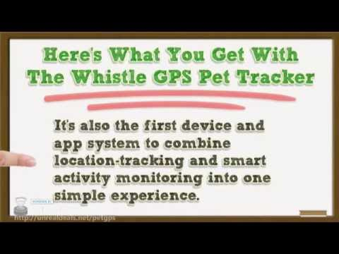 Whistle GPS Pet Tracker Review- Buy 1 Get 50% Off Another