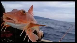 ちゅみの釣りバカ日誌♡日本海で五目船釣り~海荒れそうな気配 7時28分.