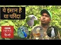 The Birdman of Jharkhand, Panna Lal (BBC Hindi)