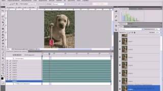 Как отредактировать анимацию в Фотошопе   Photoshop
