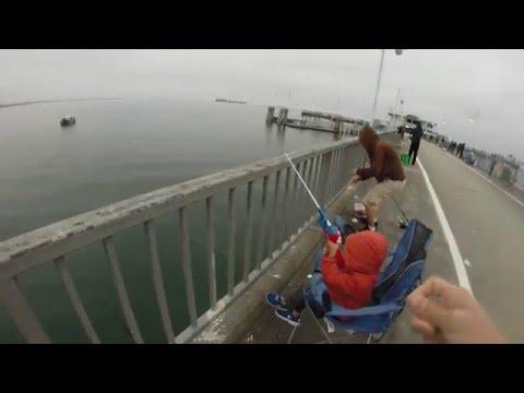 March 2016 Pier Fishing Long Beach, CA