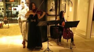 "Bach「G線上のアリア」 Bach ""Air on G String/株式会社ビジョンミュー..."