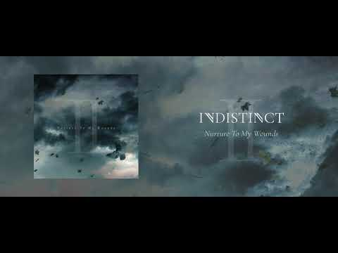 Indistinct - Nurture To My Wounds (Official Audio)