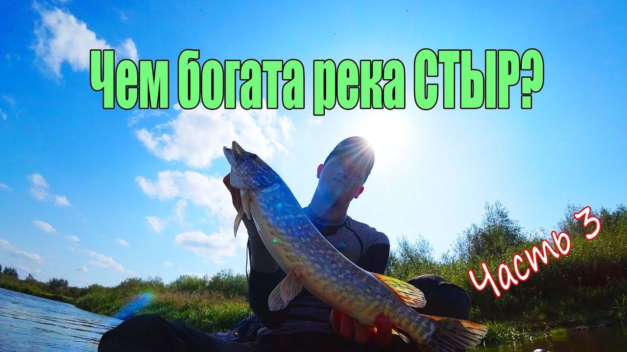 Реки Украины. СТЫР. Часть 3. Сплав. Ловля рыбы спиннингом/ КАЧЕСТВО В 4К!