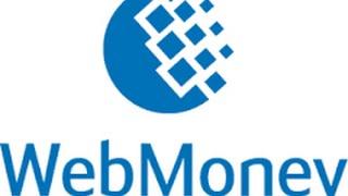 Как перевести деньги с телефона на вебмани/webmoney [Актуально](Как перевести деньги с телефона на вебмани/webmoney? Как перевести деньги с мегафона,мтс,билайн,теле2 на вебмани..., 2015-07-14T07:08:49.000Z)