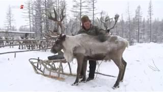 В Арктическую зону России вошли восемь районов Якутии