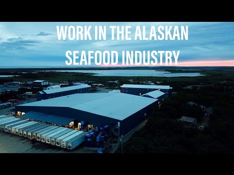 Inside Look At The Alaskan Seafood Industry-Silver Bay Seafoods-