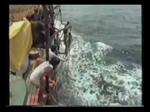 วิธีหาปลาขั้นเทพ ของ...