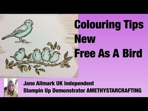 Stampin Up New Free As A Bird - Tips For Colouring The Birds