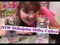 NEW Shibajuku Girls Miniature Shiba-Cuties Mini Dolls - Unboxing and Review #shibajukustylin