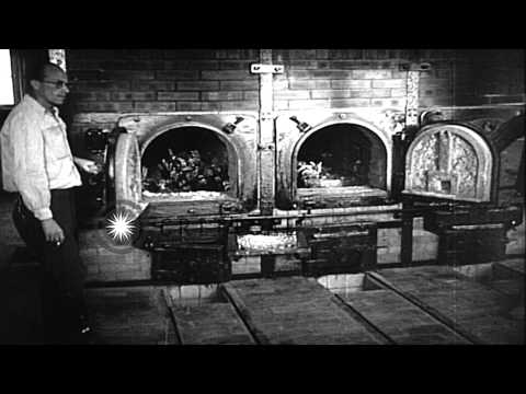 Emaciated men at concentration camp in Buchenwald, Germany. HD Stock Footage