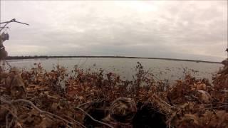 BBB Ladies Duck Hunt 2014