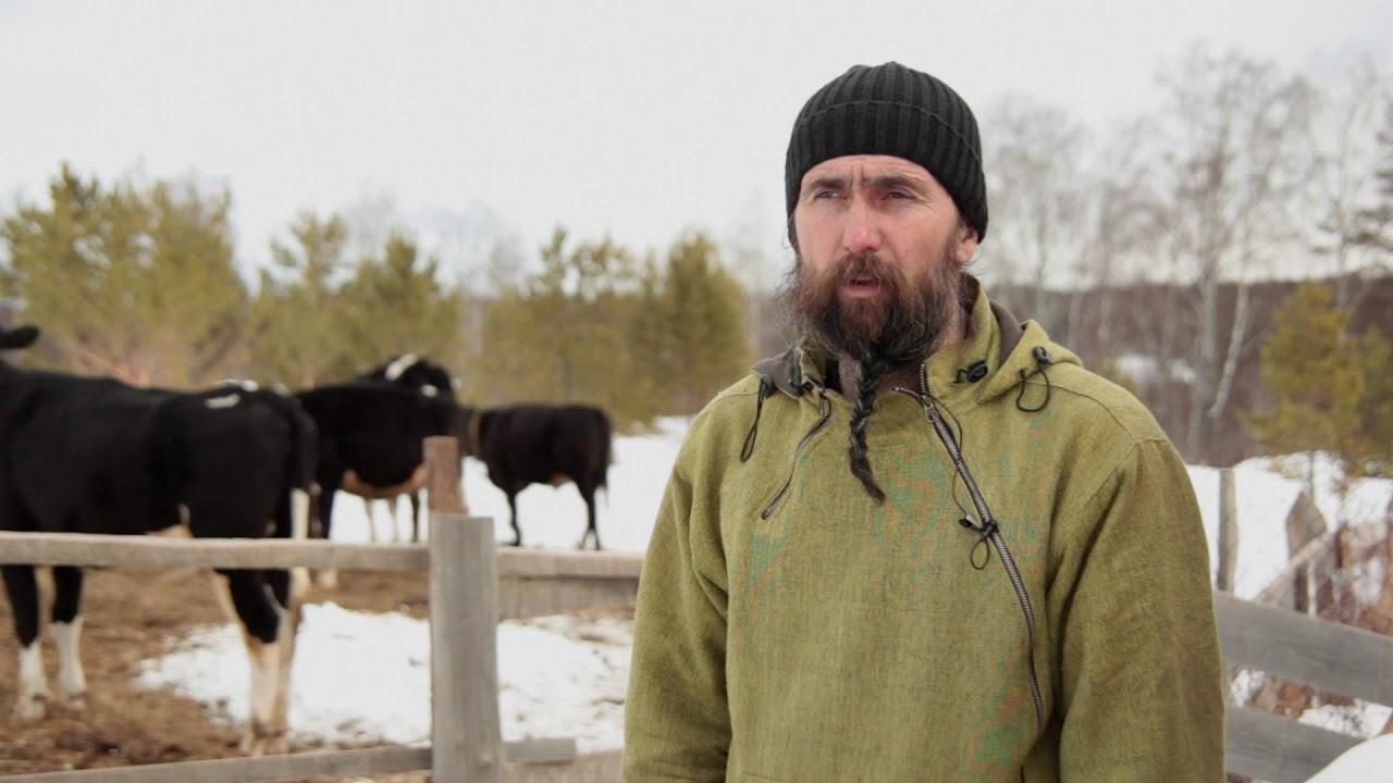 Успехи сельского хозяйства в России