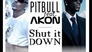 Pitbull feat Akon-Shut it Down