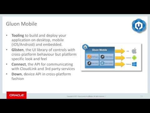 About Java EE 8, JAX-RS, JSON API, and Mobile Apps | The