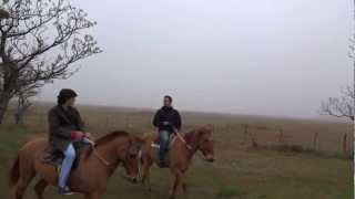Video - Galopping on a Horse in the Pampas of Argentina Part 2