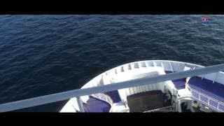 Teledysk: Rejs Off The Sea W.E.N.A. x DJ IKE x DJ NOZ