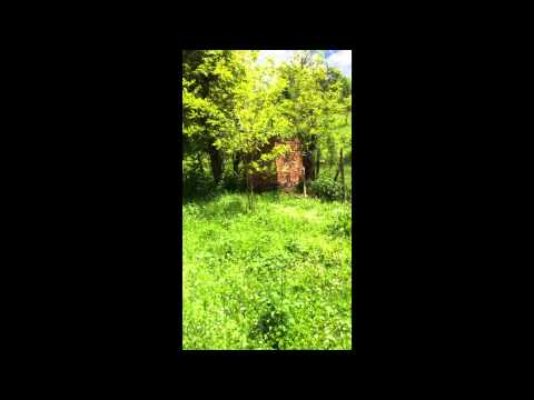 House in Bulgaria for SALE NOW
