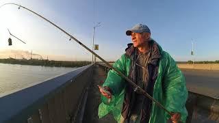 Ловля карася с моста р. Днепр г. Каменское (Днепродзержинск)