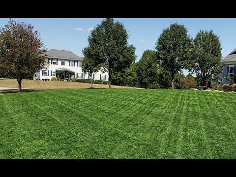 Lawn updates, Air8/Humic12/ RGS spray down & sprinkler set up