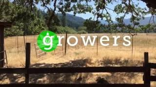 Growers: East Fork Farms Ep3 - Sungrown Cultivation