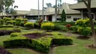 Sabah Tea: A Corporate Video