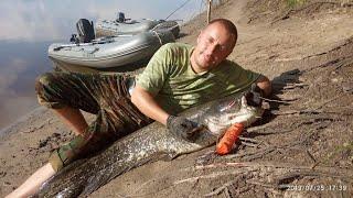Ловля СОМа троллингом(на дорожку) на реке Припять.Турбаза Припятский Стан. Вываживание сома.