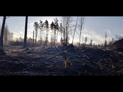 Коп в лесу,которого больше нет