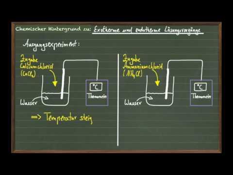 Exotherme & endotherme