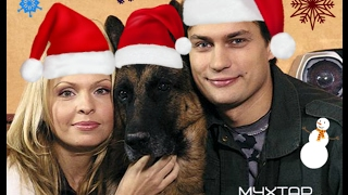 Новогодний Мухтар - At Christmas // Возвращение Мухтара