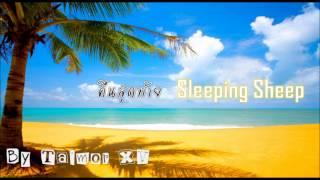 คืนสุดท้าย - Sleeping Sheep