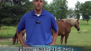 Horse Farm for sale in Edgefield County SC- Matt Anderson, Meybohm Realtors