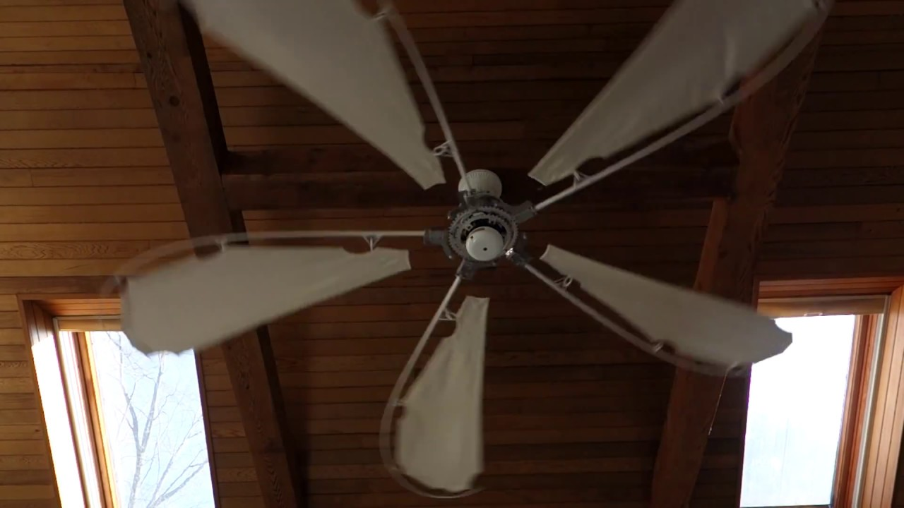5 Minutes Of Ceiling Fan For Babies