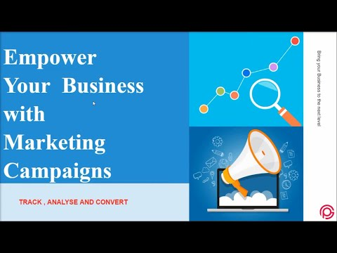 Empower Your Business with Right Marketing Campaigns   Propel Guru