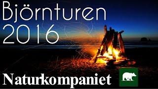 Björnturen 2016 / Naturkompaniet