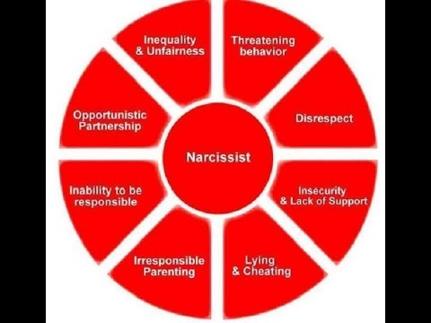 The Narcissists Relationship Wheel