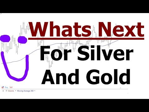 Silver And Gold Update | Stock Market About Face | What To Focus On