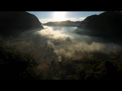 The Kheshorter: Indigenous Karen's Community Forestry (Trailer)