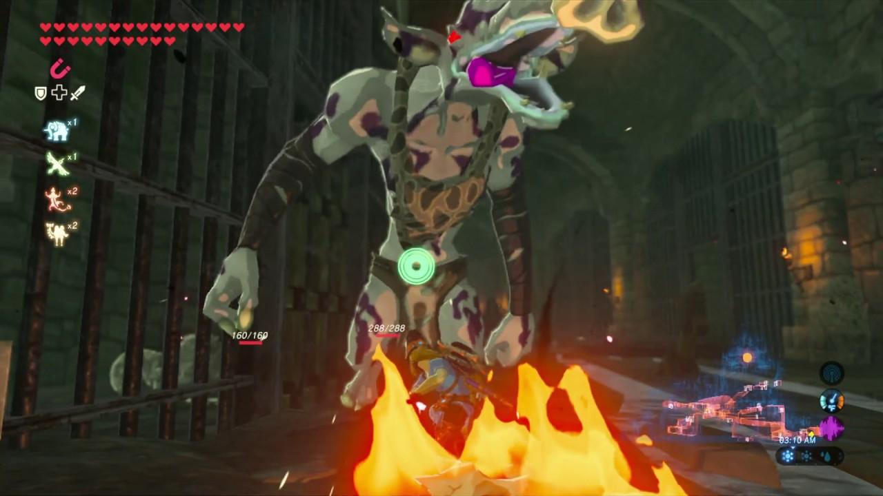 Zelda Breath Of The Wild How To Get The Hylian Shield Walkthrough Exact Location Stalnox Battle Youtube