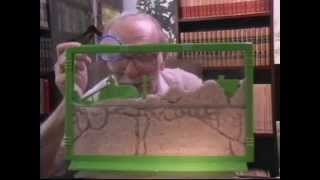 UNCLE MILTON'S ANT FARM History of the Classic Ant Farm Toy