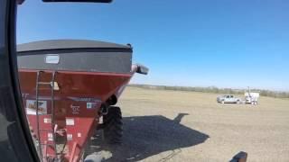 H & N Farms 2014 Harvest - Richland, IA •Sullivan Auctioneers, LLC