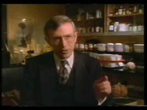 Dr. Michael Persinger 1994
