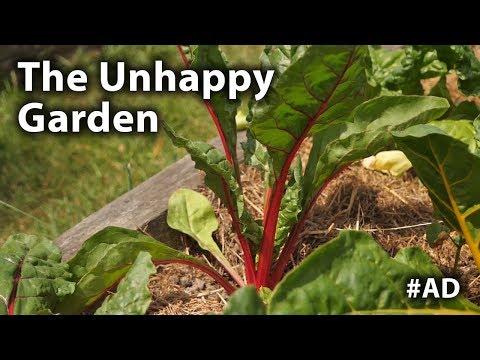 The Vegetable Garden is not Happy! - 003 - 동영상
