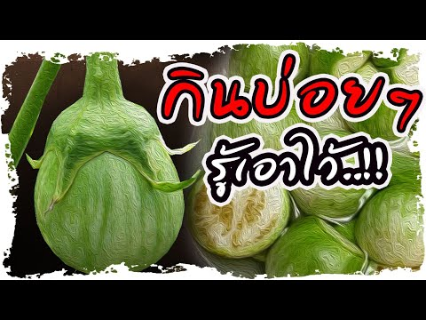 รู้เอาไว้!! กินมะเขือเปราะทุกวัน ไม่คิดว่าผลลัพธ์จะขนาดนี้..ดีจนอยากแชร์| Nava DIY