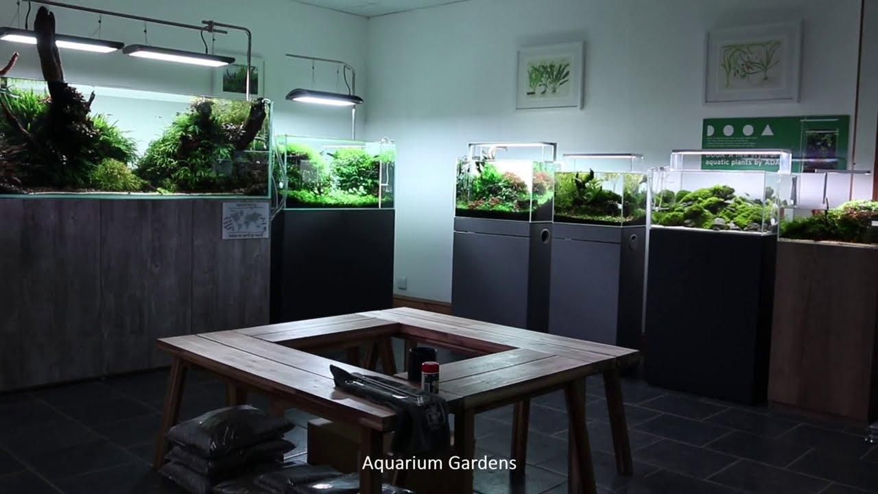 Aquascaping Showroom and Shop Display Tour Cinematic 2020 - Aquarium Gardens
