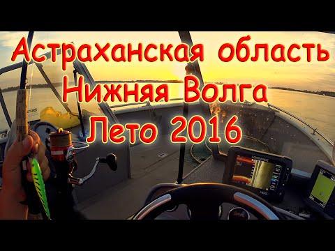 Астраханская область. Нижняя Волга. Лето 2016