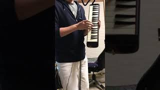 祝!鍵盤ハーモニカ新調.