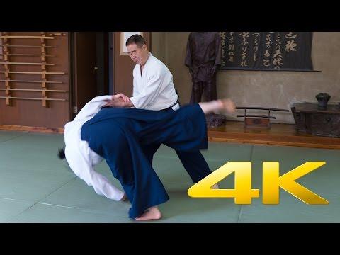 Aikido Experience with Matsumaru Sensei - 合気道 - 4K Ultra HD