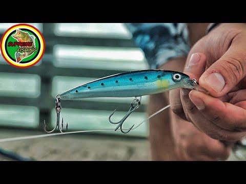 This Lure Catches Too Many Fish! (Pier Fishing Jacks, Spanish Mackerel, Ladyfish And More)